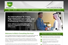 BizLiz Consulting Services